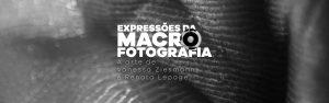 Expressões da Macrofotografia