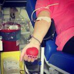 Doar sangue é um gesto de amor!